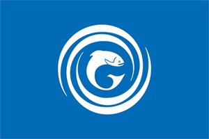 Gaelic Flag